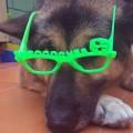 Katia con gafas forococheras